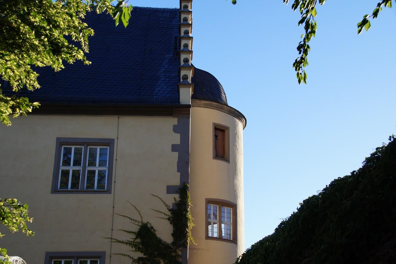 180630-Schloss-Weinfest-T1 DSC02101